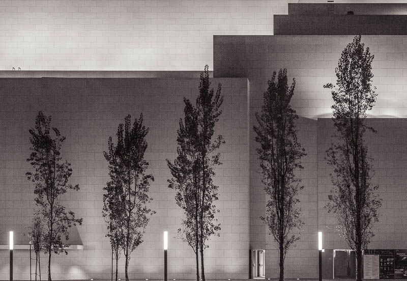 Five Trees – Avenue of the Arts, Costa Mesa, California