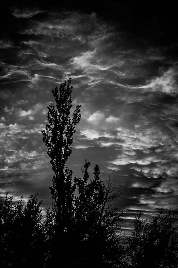 Rippled Sky