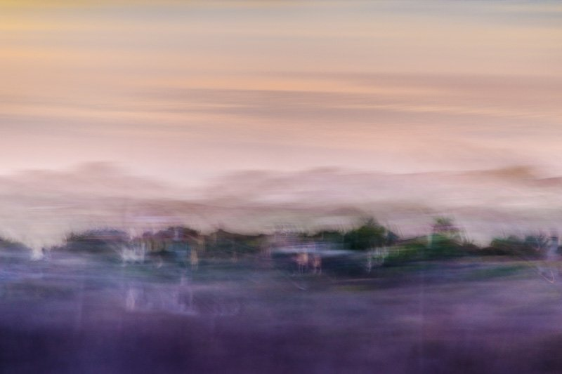 Abstract Landscape 11