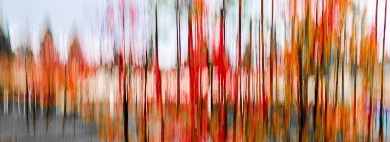 Autumn Dream 1