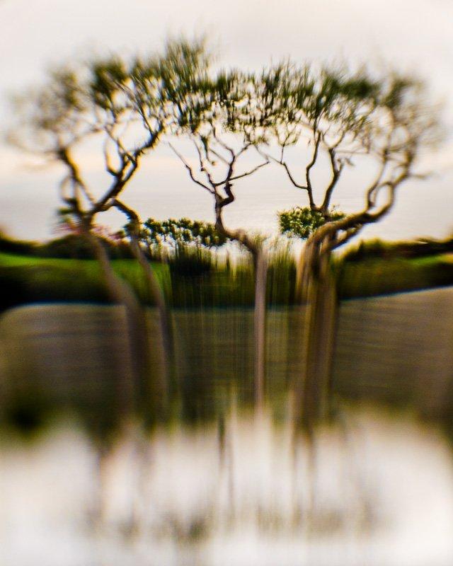 Inner Landscape 11