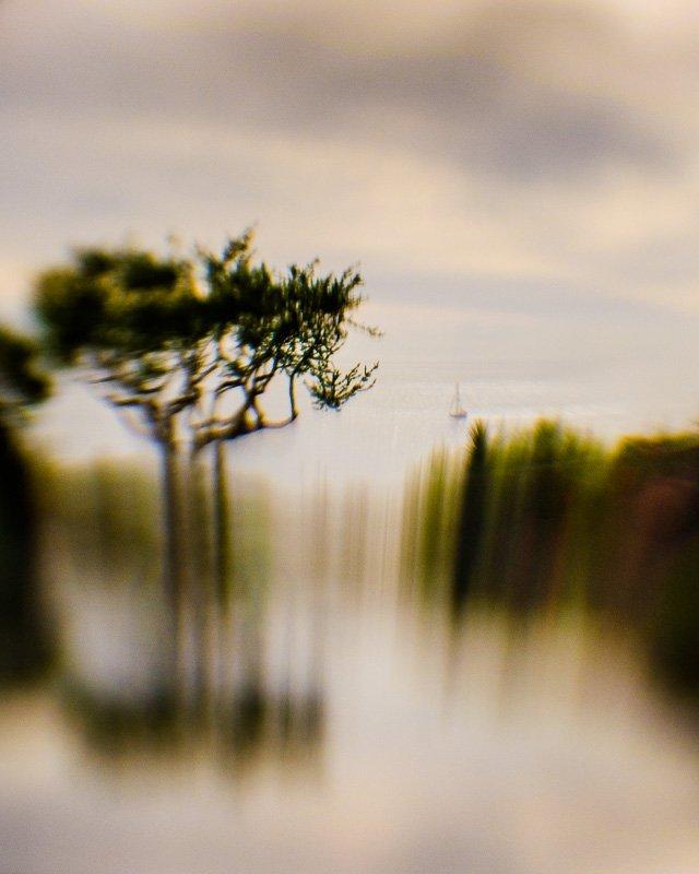 Inner Landscape 12