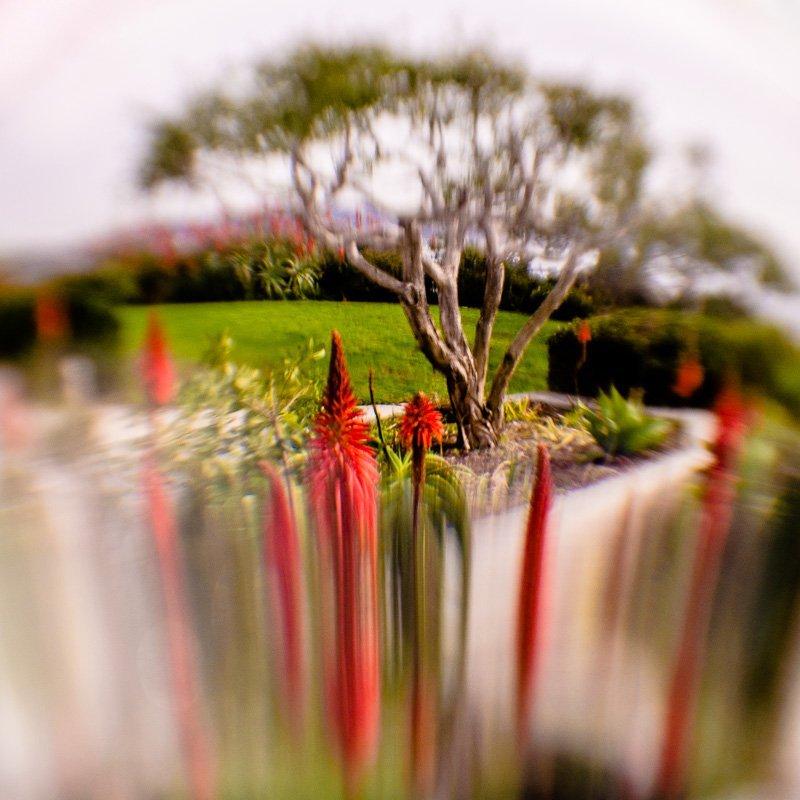 Inner Landscape 16