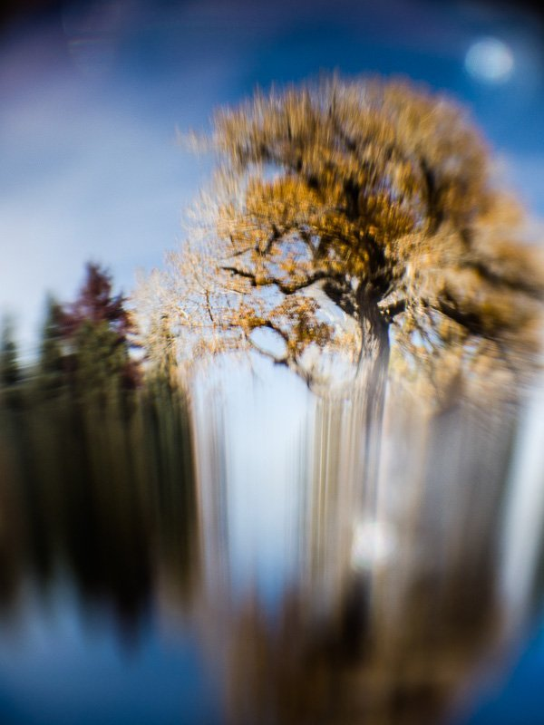 Inner Landscape 2