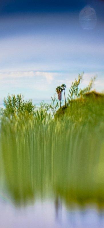 Inner Landscape 27