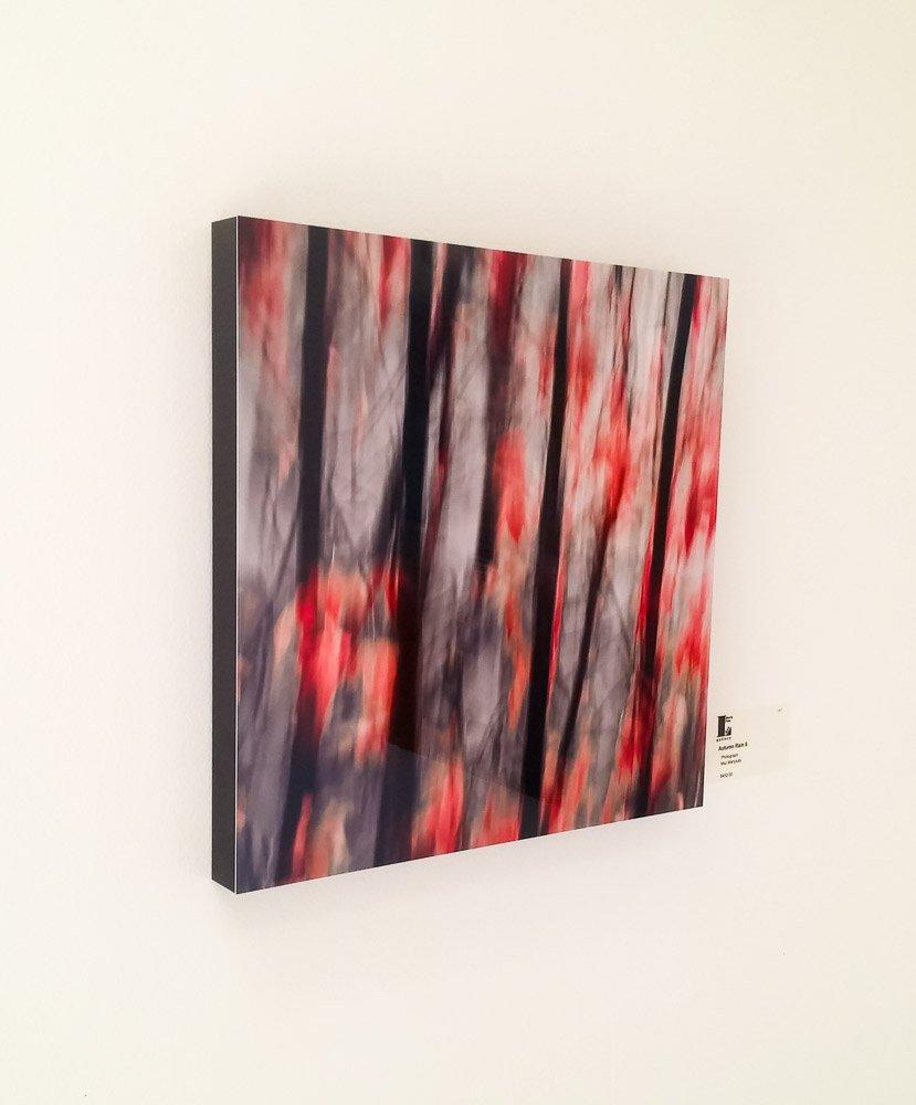 Autumn Rain 6 - HD Metal Print - Flush Mount Frame