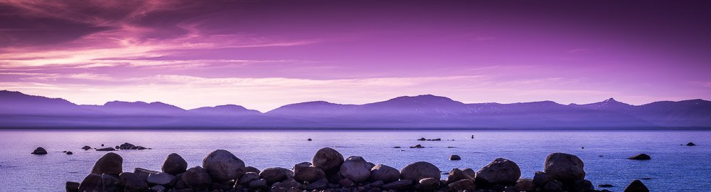 Purple Calm