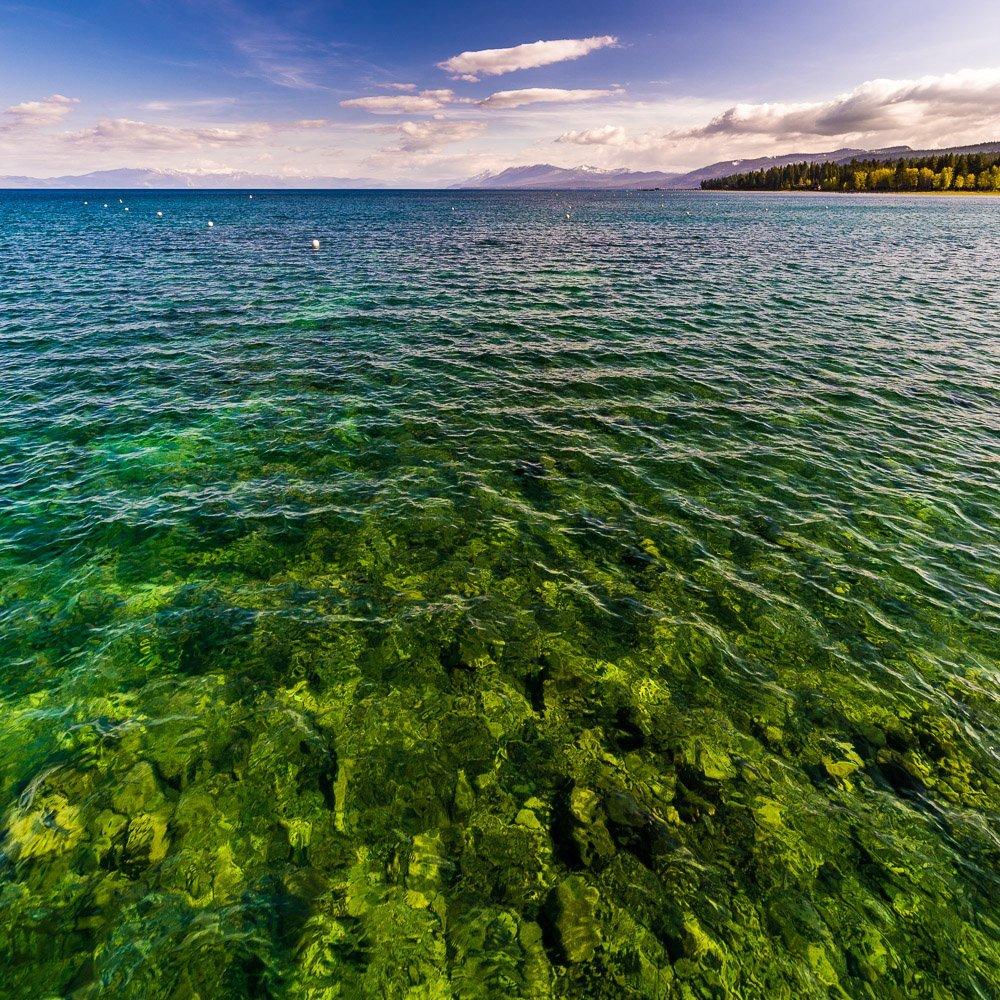 Tahoe Green