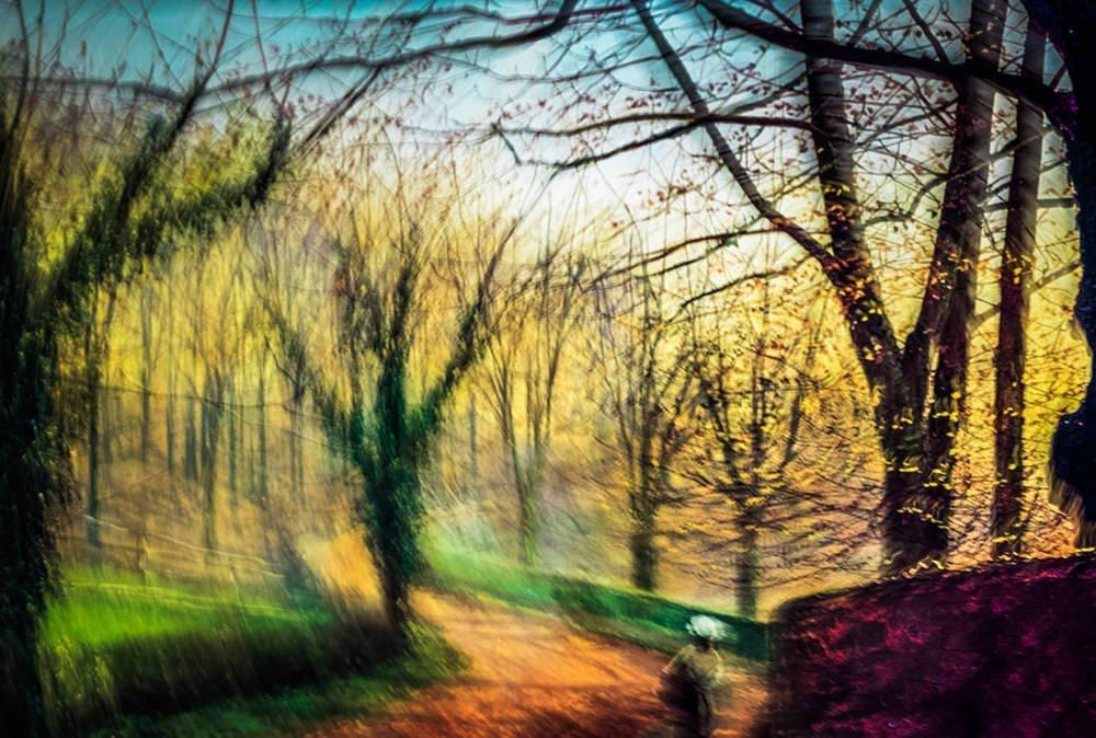 Art Impression 5 - Stapleton Park near Pontefract Sun