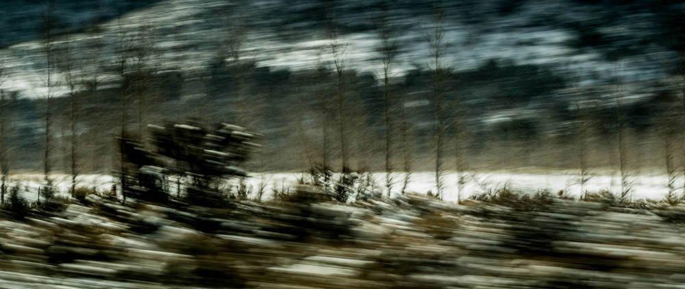 Sierra Snow 2