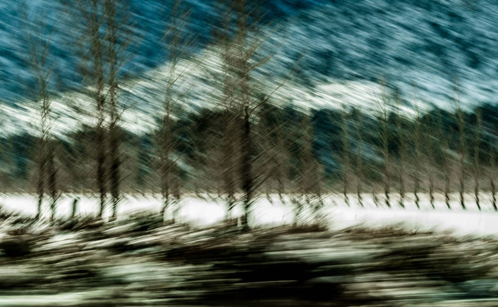 Snow Abstract 13