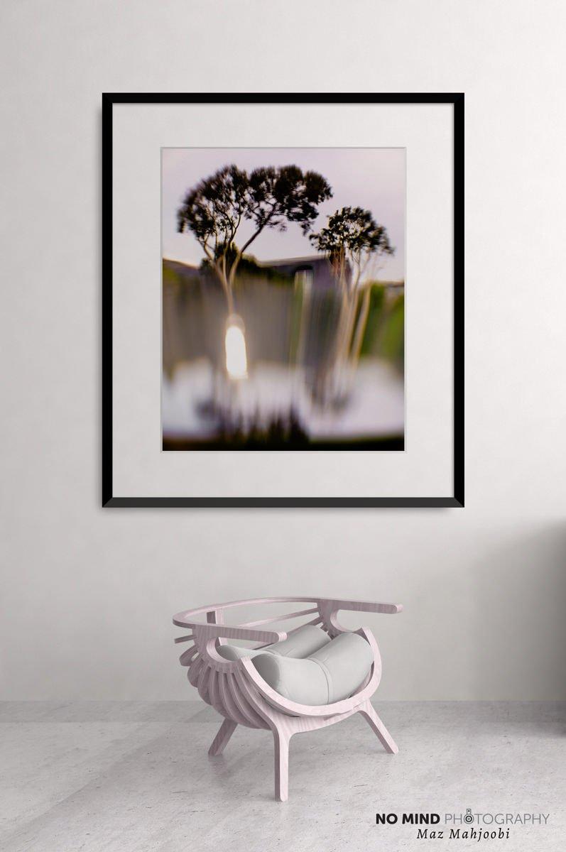 Inner Landscape 14 - In Situ