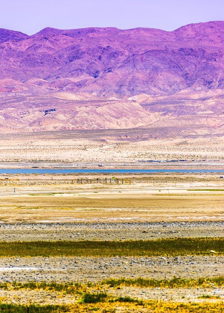 Landscape 55