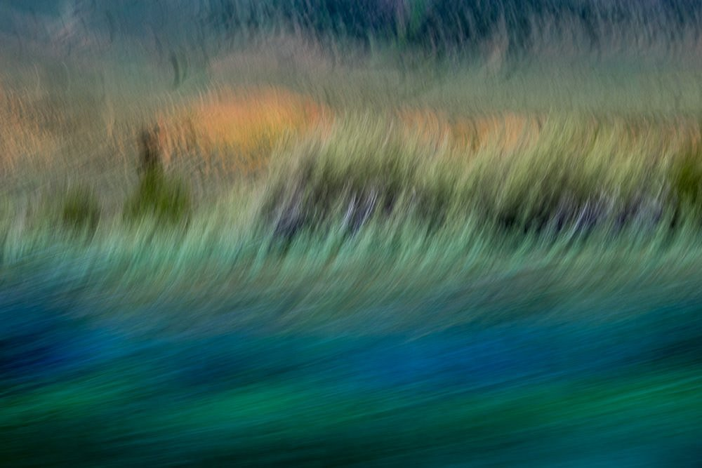 Nature Abstract 142