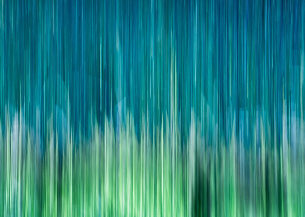 Nature Abstract 244
