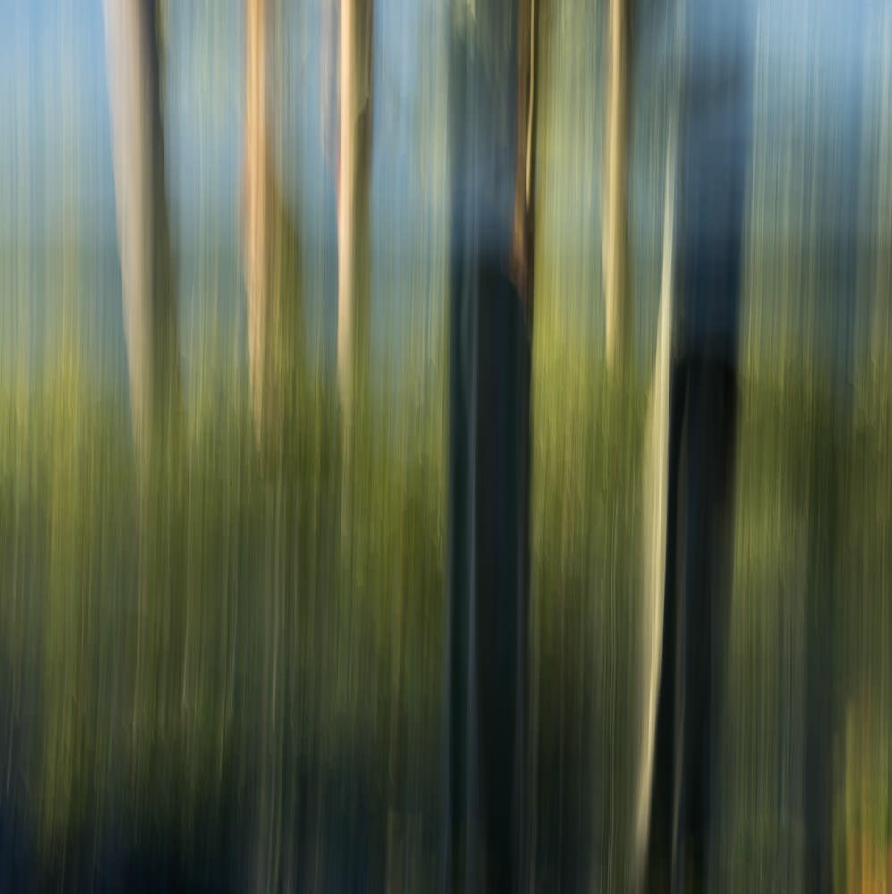 Nature Abstract 4