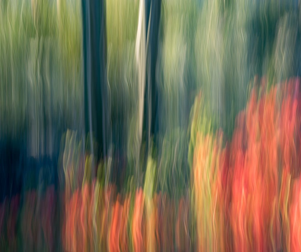 Nature Abstract 8